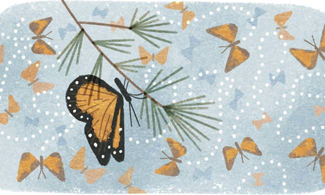 41st-anniversary-of-the-discovery-of-the-mountain-of-the-butterflies